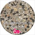 Somerfield Delta 4222 Ash